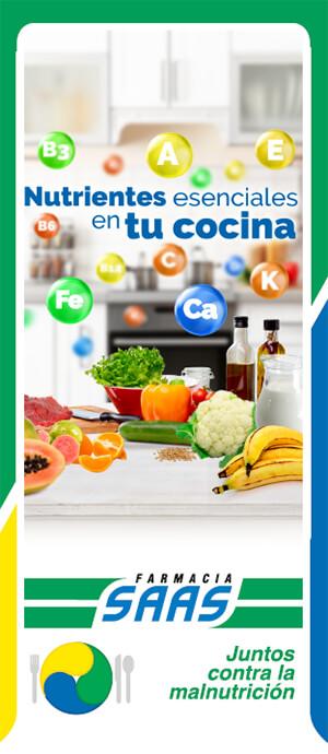 Guía 14: Nutrientes Esenciales en tu Cocina